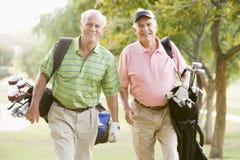 Männliche Freunde, die ein Spiel des Golfs genießen Lizenzfreie Stockbilder