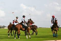Männliche Polo-Spieler Stockfotos