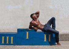 Männliches Baumuster Lizenzfreie Stockbilder