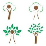 mänsklig tree Arkivbilder