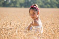 Moça adorável no campo de trigo dourado imagens de stock royalty free