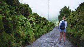 A moça anda ao longo da estrada e dos olhares de floresta nas plantas vídeos de arquivo
