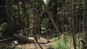 A moça anda na montanha com bakpack - parque nacional de Geórgia filme