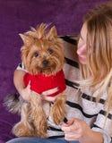 Moça bonita alegre que tem o divertimento com cão foto de stock royalty free