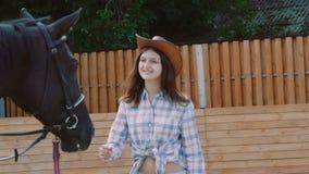 A moça bonita anda ao cavalo amigável e às carícias ele nariz lentamente filme