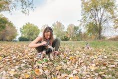Moça bonita com seu cachorrinho do cão do yorkshire terrier que aprecia e que joga no dia do outono no foco seletivo do parque imagens de stock royalty free