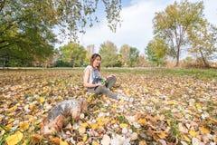 Moça bonita com seu cachorrinho do cão do yorkshire terrier que aprecia e que joga no dia do outono no foco seletivo do parque imagens de stock