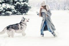 Moça bonita na floresta do inverno com cão de puxar trenós Siberian Símbolo do ano novo 2018 Fotografia de Stock