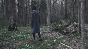 Moça bonita que anda através da floresta da mola video estoque