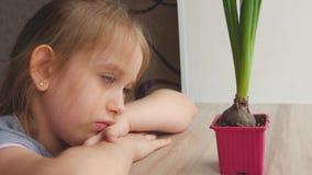 Moça bonita que olha a planta em pasta com expressão pensativa Povos, jardinando, flor plantando o conceito video estoque