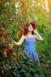 A moça bonita que veste uma grinalda do vermelho sae, em um vestido azul, estando no fundo dos arbustos do outono imagem de stock
