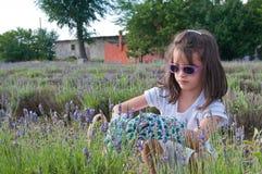Moça com os sunglases que escolhem a alfazema Fotografia de Stock Royalty Free