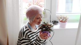 Moça com planta em um potenciômetro vídeos de arquivo