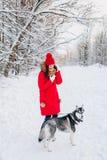 Moça com seu cão ronco no parque do inverno Animal de estimação doméstico husky fotos de stock royalty free