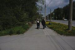 Moça dois que anda junto duas meninas elegantes felizes que correm na mola andam, vista traseira, conceito da amizade fotos de stock royalty free