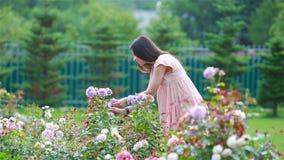 Moça em um jardim entre rosas bonitas Cheiro das rosas vídeos de arquivo