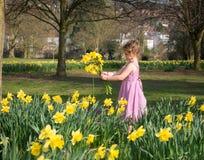 Moça em um vestido consideravelmente cor-de-rosa que guarda um grupo dos narcisos amarelos imagem de stock