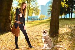A moça está treinando o cachorrinho vermelho do cão de puxar trenós fotos de stock