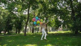 A moça feliz anda no parque ensolarado verde e guarda balões coloridos vídeos de arquivo