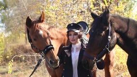 A moça luxuoso anda com os dois cavalos na floresta no tempo morno do outono video estoque