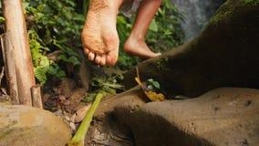 Moça no vestido branco que anda com os pés descalços à cachoeira pequena na selva tropical da floresta úmida Curso despreocupado  filme