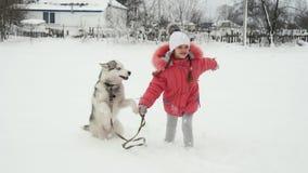 Moça que joga com o cão do malamute do cão de puxar trenós siberian na neve fora no movimento lento video estoque