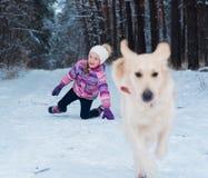 Moça que joga com o golden retriever na caminhada do inverno Imagens de Stock Royalty Free