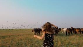 Moça que levanta na natureza do campo com o rebanho do cavalo no campo filme