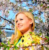 Moça que levanta no jardim de sakura Fotos de Stock