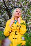 Moça que levanta no jardim de sakura Imagem de Stock Royalty Free