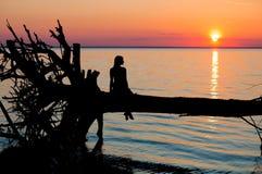 Moça que senta-se na árvore no por do sol na praia Imagens de Stock