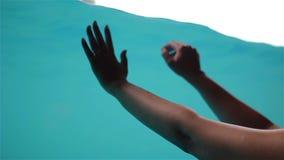 A moça toca nas mãos à parede de vidro da associação com água video estoque