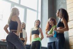 Moças no sportswear que conversam antes do treinamento da aptidão imagem de stock royalty free