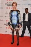 Moët British Independent Film Awards 2014. LONDON, ENGLAND - DECEMBER 07: Emma Thompson attends the Moet British Independent Film Awards 2014 at Old royalty free stock photos