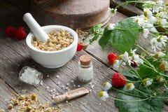 Moździerz wysuszeni stokrotek ziele, homeopatyczne globula i chamomile rośliny, Fotografia Stock