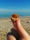 Możesz słuchać dźwięka morze ty Zdjęcie Royalty Free