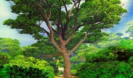 Możny drzewo obrazy royalty free