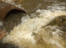 废水跑慢从一条具体管道直接在有绿草的一个自然池塘上在银行和浅绿色的小mo 库存图片