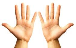 Mão dois Foto de Stock Royalty Free