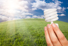 Mão fêmea com a ampola da economia de energia sobre Fie Imagem de Stock Royalty Free