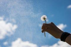 Resultado de imagem para uma flor no céu