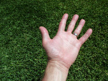 Mão humana Imagem de Stock Royalty Free