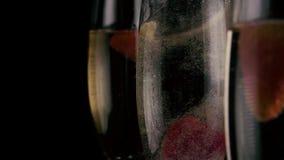 Mo lento Em um dos três vidros com champanhe caem as morangos video estoque