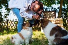 Moça bonita com cachorrinhos Imagens de Stock Royalty Free