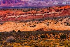 Покрашенный песчаник желтого цвета пустыни оранжевый красный сгабривает национальный парк Moab Юту Стоковая Фотография