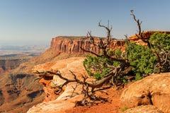 Moab Utah, voûtes et parcs nationaux de Canyonlands Image stock
