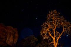 Moab Utah wölbt Naturschutzpark-Sternnacht stockfotos