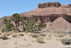Moab-Wüste Lizenzfreie Stockfotografie