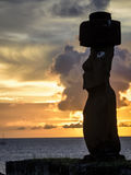 Moai雕象在复活节岛,智利 库存照片