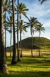 Moai στο νησί Πάσχας, Χιλή Στοκ φωτογραφία με δικαίωμα ελεύθερης χρήσης